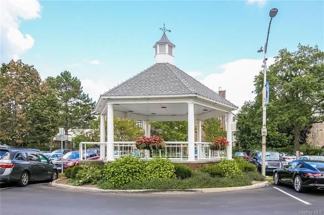 25 Bedford Road, Pleasantville, NY 10570 (MLS #H6080192) :: Mark Seiden Real Estate Team