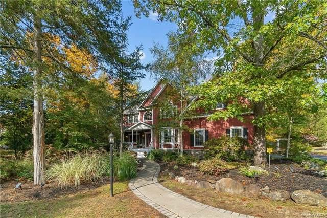 30 Alison Court, Kingston, NY 12401 (MLS #H6080248) :: Signature Premier Properties