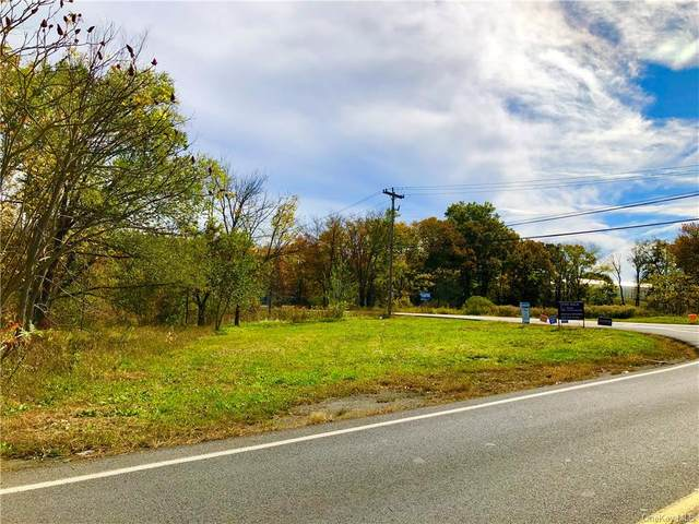 1430 State Route 52, Walden, NY 12586 (MLS #H6080289) :: William Raveis Baer & McIntosh
