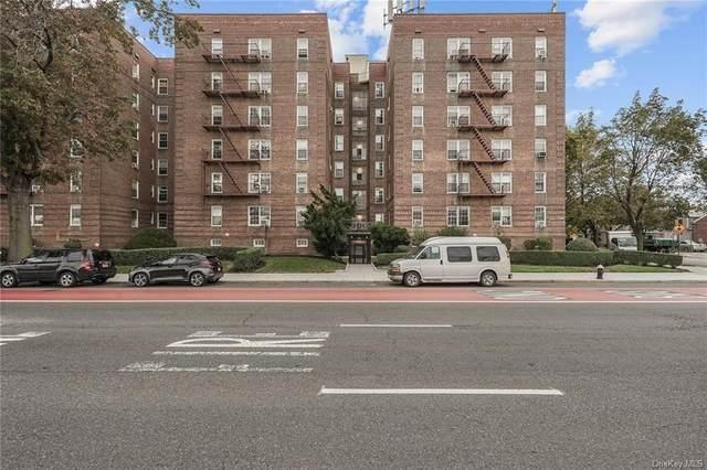 6393 Woodhaven Boulevard 6B3, Rego Park, NY 11374 (MLS #H6080292) :: Mark Boyland Real Estate Team