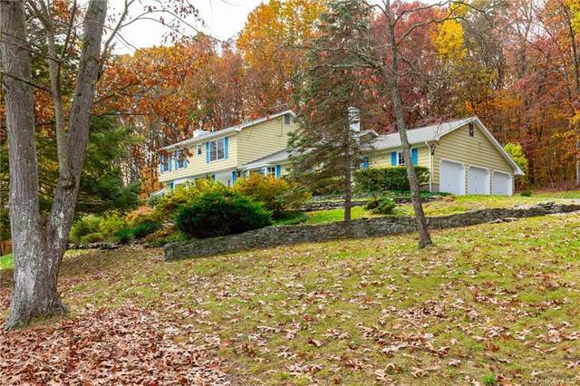 315 Browning Road, Hyde Park, NY 12538 (MLS #H6080347) :: Cronin & Company Real Estate
