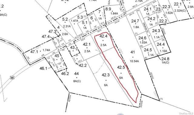 State Route 55, Neversink, NY 12765 (MLS #H6080455) :: Mark Seiden Real Estate Team