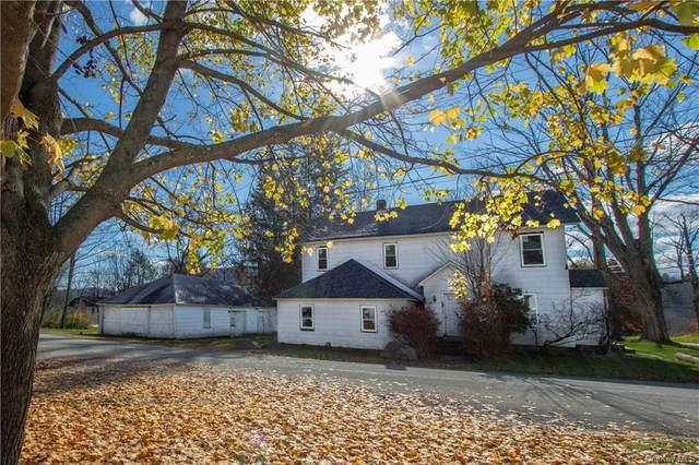 562 Old Route 17, Livingston Manor, NY 12758 (MLS #H6080488) :: McAteer & Will Estates | Keller Williams Real Estate