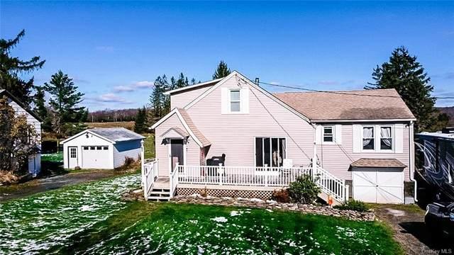 65 Shandelee Lake Road, Livingston Manor, NY 12758 (MLS #H6080505) :: Mark Seiden Real Estate Team
