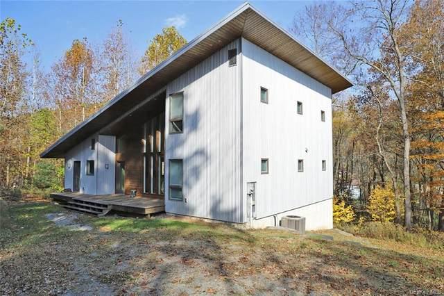 20 Ridge Road, Hankins, NY 12741 (MLS #H6080664) :: Kevin Kalyan Realty, Inc.