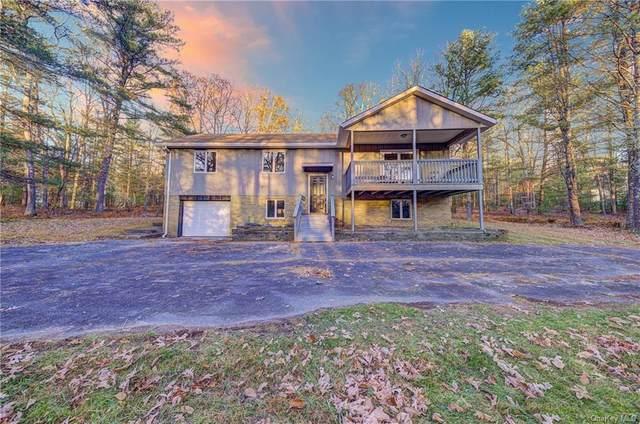 164 Taras Shevchenko Road, Glen Spey, NY 12737 (MLS #H6080685) :: McAteer & Will Estates   Keller Williams Real Estate