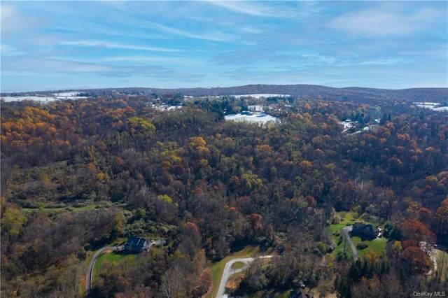 16 Brady Brook Farm Road, Pawling, NY 12564 (MLS #H6080706) :: McAteer & Will Estates | Keller Williams Real Estate