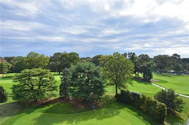 4784 Boston Post Road B55, Pelham, NY 10803 (MLS #H6081168) :: McAteer & Will Estates | Keller Williams Real Estate