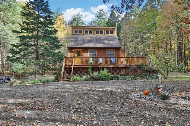 117 Route 32A, Saugerties, NY 12477 (MLS #H6081221) :: McAteer & Will Estates | Keller Williams Real Estate