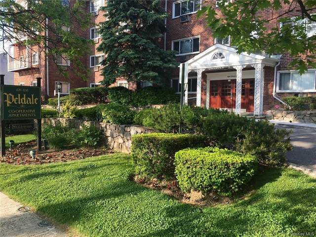828 Pelhamdale Avenue Pi, New Rochelle, NY 10801 (MLS #H6081318) :: McAteer & Will Estates | Keller Williams Real Estate