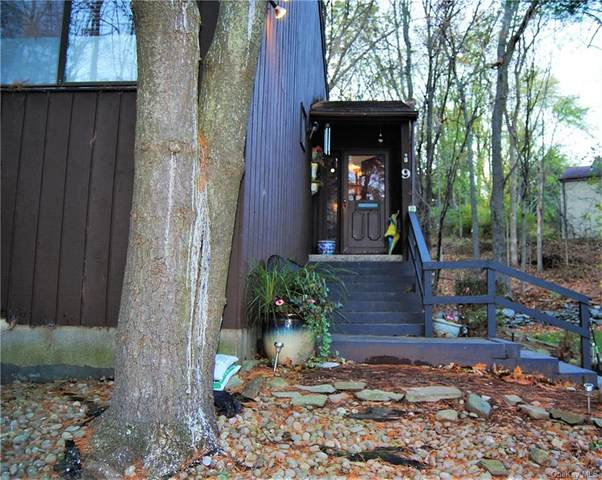 9 Laurel Court, Highland Mills, NY 10930 (MLS #H6081328) :: William Raveis Baer & McIntosh