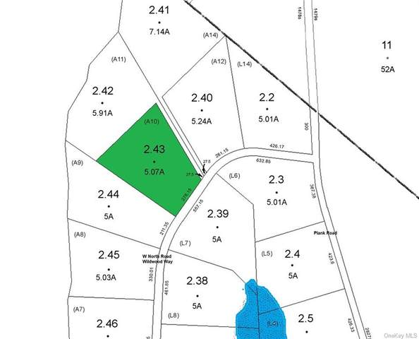 Lot 2.43 W North Road, Forestburgh, NY 12777 (MLS #H6081443) :: McAteer & Will Estates | Keller Williams Real Estate