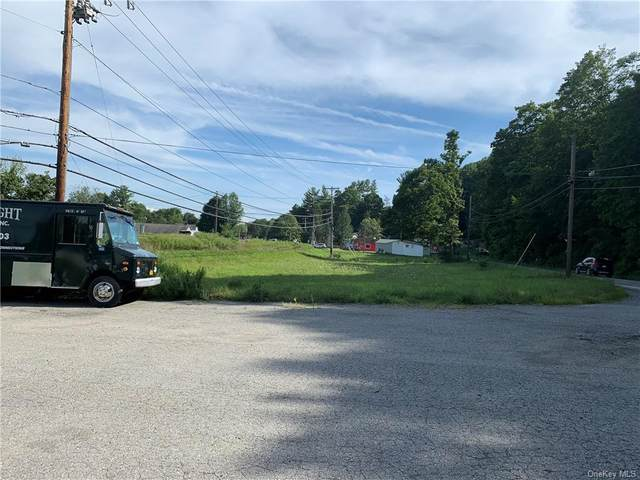 1525 Route 343, Dover Plains, NY 12522 (MLS #H6081470) :: Kevin Kalyan Realty, Inc.