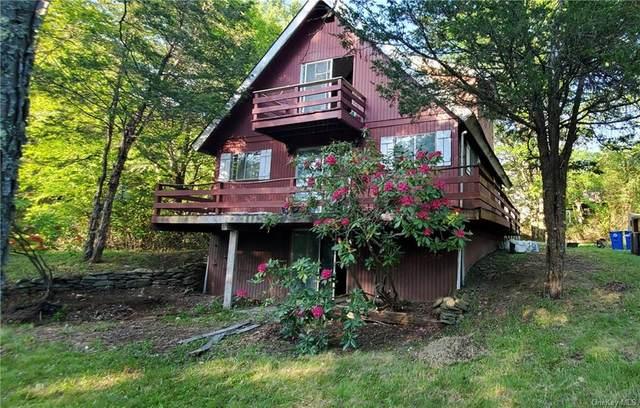 24 Aster Road, Loch Sheldrake, NY 12759 (MLS #H6081529) :: McAteer & Will Estates   Keller Williams Real Estate