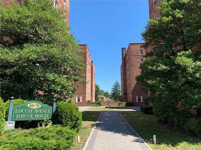 60 Locust Avenue 311A, New Rochelle, NY 10801 (MLS #H6081577) :: McAteer & Will Estates   Keller Williams Real Estate