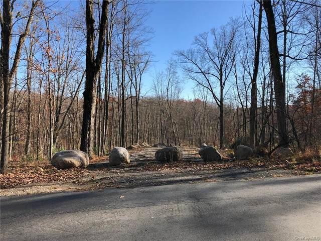 Roosa Gap Lot 1 Road, Wurtsboro, NY 12790 (MLS #H6081582) :: McAteer & Will Estates | Keller Williams Real Estate