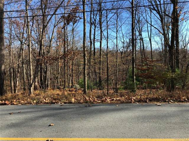 Roosa Gap Lot 2 Road, Wurtsboro, NY 12790 (MLS #H6081588) :: McAteer & Will Estates | Keller Williams Real Estate