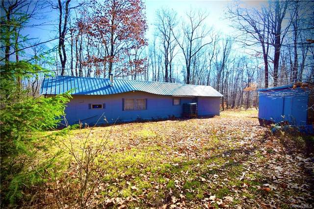 596 Cat Hollow Drive, Roscoe, NY 12776 (MLS #H6081631) :: McAteer & Will Estates | Keller Williams Real Estate