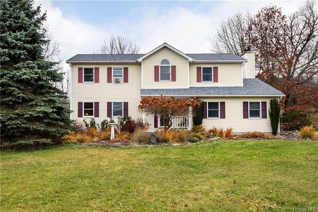 11 Deer Trail Road, Chester, NY 10918 (MLS #H6081729) :: McAteer & Will Estates | Keller Williams Real Estate