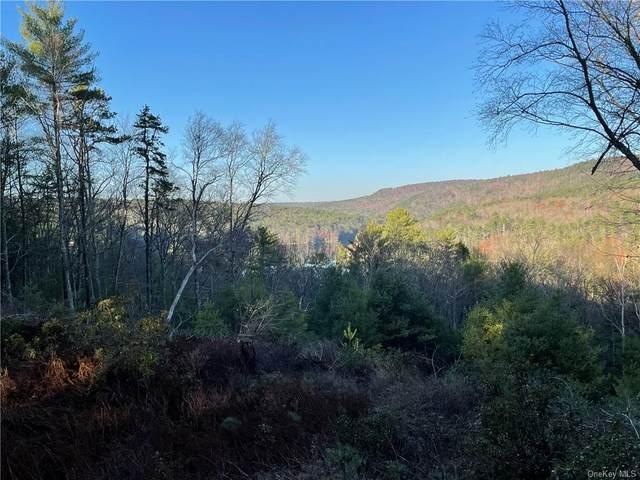 Lot 4.1 Rio Dam Road, Glen Spey, NY 12737 (MLS #H6081764) :: McAteer & Will Estates   Keller Williams Real Estate