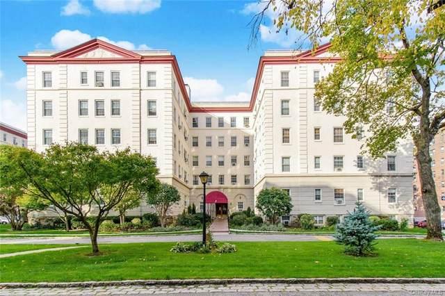 3 Park Lane 4B, Mount Vernon, NY 10552 (MLS #H6081767) :: McAteer & Will Estates | Keller Williams Real Estate