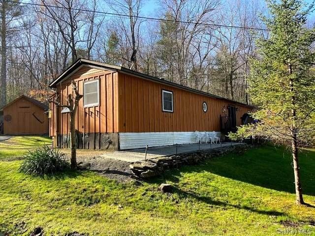 24 Len Stephenson Drive, Cochecton, NY 12726 (MLS #H6081939) :: William Raveis Baer & McIntosh