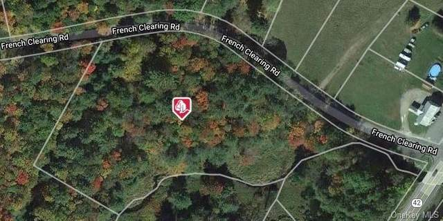 French Clearing Road, Forestburgh, NY 12777 (MLS #H6082073) :: The McGovern Caplicki Team