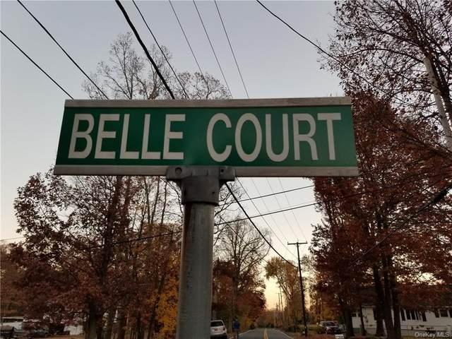2 6 10 14 Belle Court, New Windsor, NY 12553 (MLS #H6082139) :: Carollo Real Estate