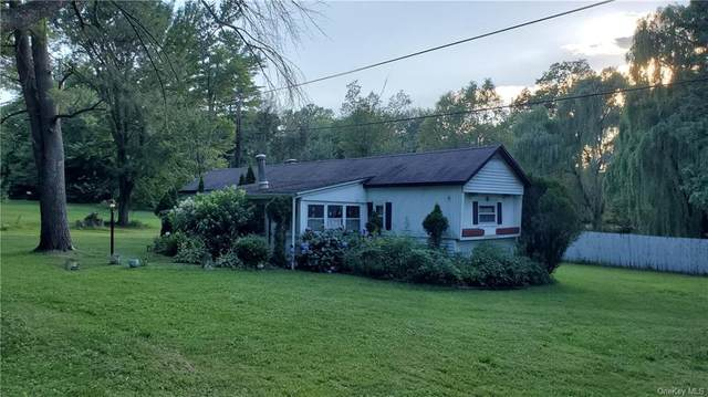 7 Rainbow Lane, Pine Bush, NY 12566 (MLS #H6082178) :: Cronin & Company Real Estate