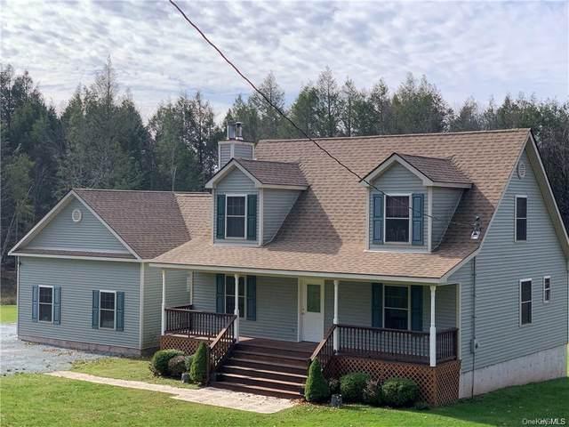 595 Hurd And Parks Road, Swan Lake, NY 12783 (MLS #H6082603) :: McAteer & Will Estates   Keller Williams Real Estate