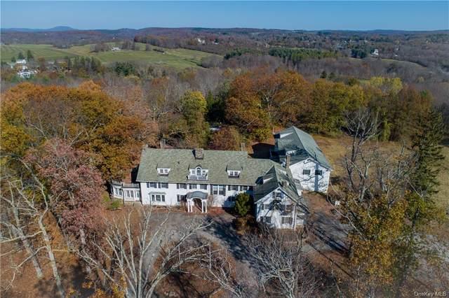 54 Ramble Hill Road, Millbrook, NY 12545 (MLS #H6082612) :: McAteer & Will Estates | Keller Williams Real Estate