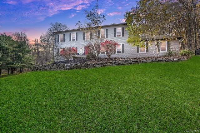 65 Carly Drive, Highland, NY 12528 (MLS #H6082712) :: McAteer & Will Estates | Keller Williams Real Estate