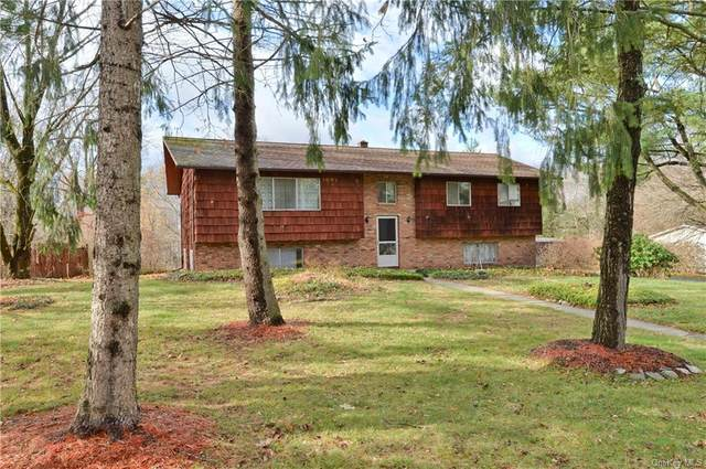 28 Overhill Lane, Warwick, NY 10990 (MLS #H6082773) :: Cronin & Company Real Estate