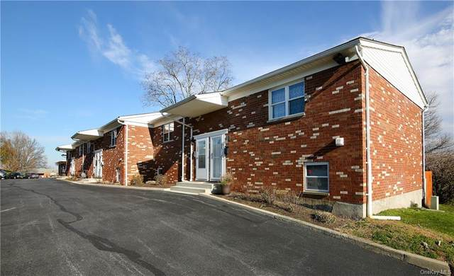 13 Alpine Drive G, Wappingers Falls, NY 12590 (MLS #H6082897) :: William Raveis Baer & McIntosh