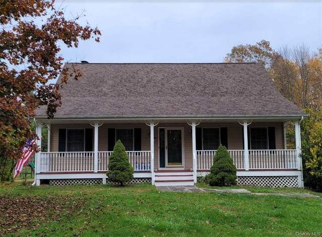 18 Howell Street, Pine Bush, NY 12566 (MLS #H6082975) :: Cronin & Company Real Estate