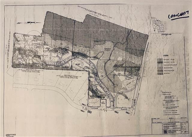 Cottage Place, Granite Springs, NY 10527 (MLS #H6082998) :: Mark Boyland Real Estate Team