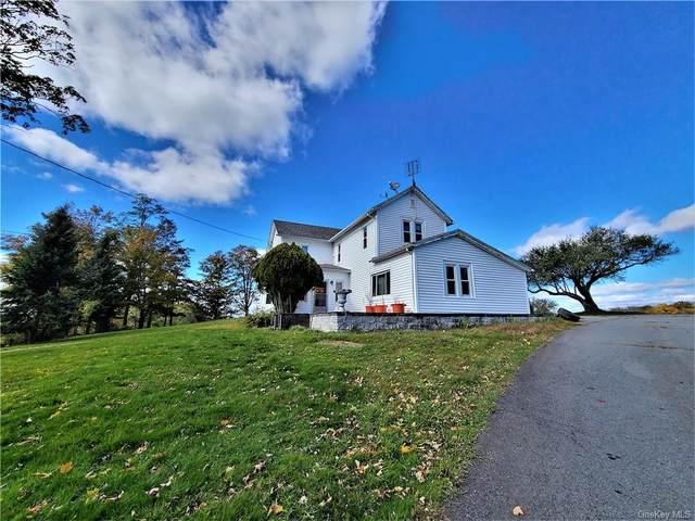 88 Le Roy Road, Loch Sheldrake, NY 12759 (MLS #H6083041) :: McAteer & Will Estates   Keller Williams Real Estate