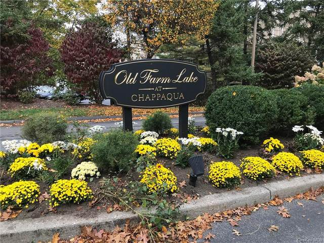 138 Deer Run, Chappaqua, NY 10514 (MLS #H6083096) :: Mark Boyland Real Estate Team
