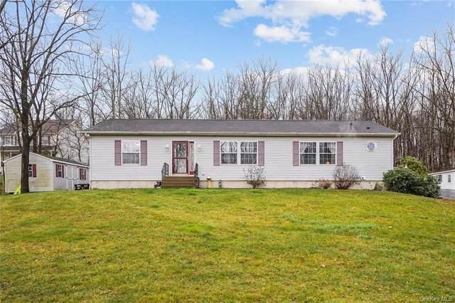 65 Hambletonian Avenue, Chester, NY 10918 (MLS #H6083152) :: McAteer & Will Estates | Keller Williams Real Estate