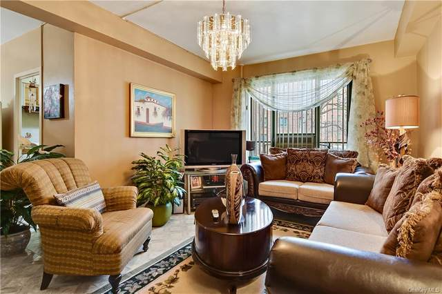 2055 Mcgraw Avenue 1B, Bronx, NY 10462 (MLS #H6083157) :: Mark Boyland Real Estate Team