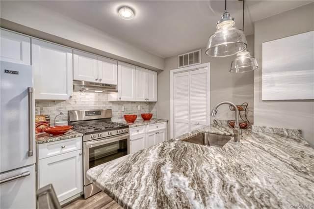 454 E Crooked Hill Road #454, Pearl River, NY 10965 (MLS #H6083165) :: Mark Boyland Real Estate Team
