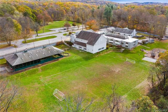 325 W Patent Road, Mount Kisco, NY 10549 (MLS #H6083167) :: Signature Premier Properties