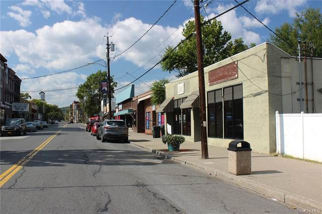 172 Canal Street, Ellenville, NY 12428 (MLS #H6083176) :: Marciano Team at Keller Williams NY Realty