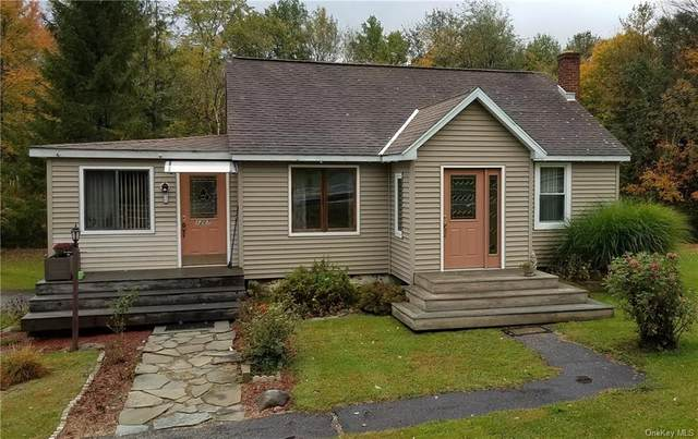 1207 Ulster Heights Road, Ellenville, NY 12428 (MLS #H6083380) :: Cronin & Company Real Estate