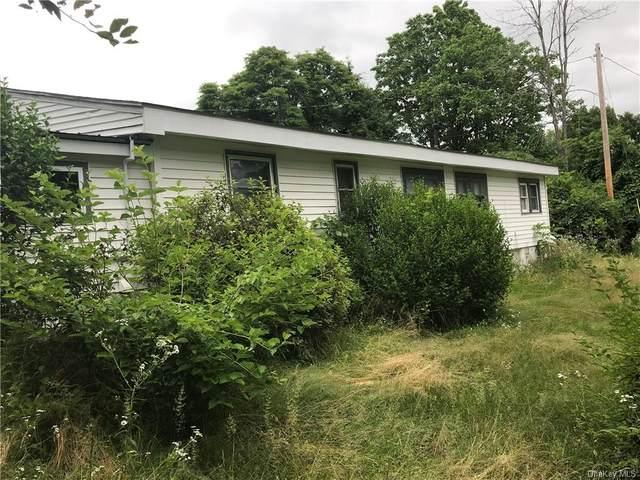 20 Perconti Lane, New Paltz, NY 12561 (MLS #H6083403) :: McAteer & Will Estates | Keller Williams Real Estate