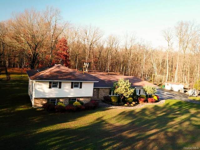 9 Sherry Lane, Goshen, NY 10924 (MLS #H6083422) :: Cronin & Company Real Estate