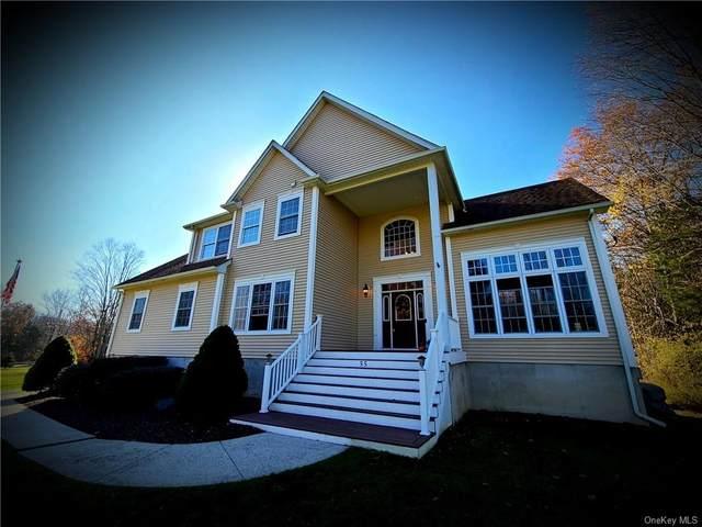 55 Station Road, Washingtonville, NY 12577 (MLS #H6083653) :: Cronin & Company Real Estate