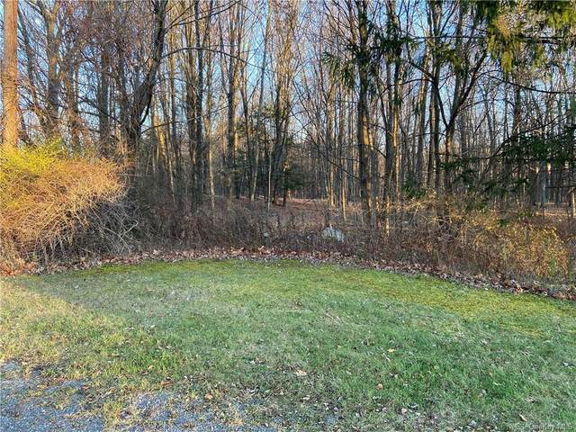 Lot A Shoddy Hollow Road, Otisville, NY 10963 (MLS #H6083678) :: Nicole Burke, MBA | Charles Rutenberg Realty