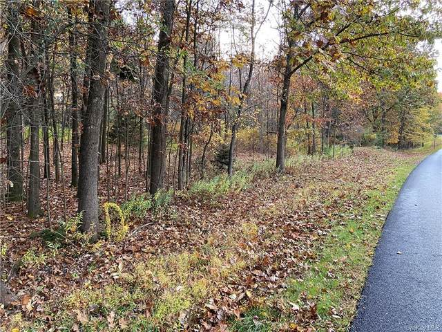Lot B Shoddy Hollow Road, Otisville, NY 10963 (MLS #H6083679) :: Nicole Burke, MBA | Charles Rutenberg Realty