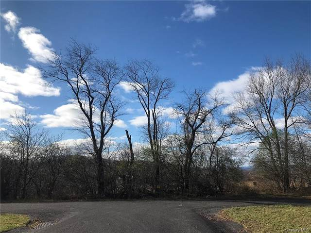 10 Winner Circles Lane, Goshen, NY 10924 (MLS #H6083700) :: Cronin & Company Real Estate